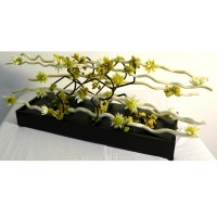 Contemporary Sun Kissed Keylime: (black wood base, natural colored rattan branches, Keylime blossoms, lime colored orchids and moss)